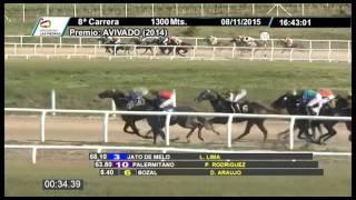 Vidéo de la course PMU PREMIO AVIVADO