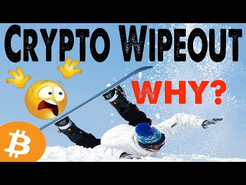 WHY: CRYPTO MARKET WIPEOUT?  YOU'LL STILL GET RICH! (ZOOM OUT)  TOP 20 COIN
