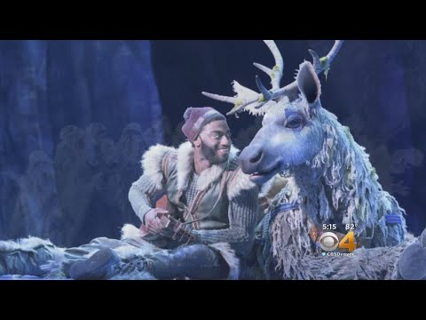 Moody's Review: 'Frozen: The Musical'