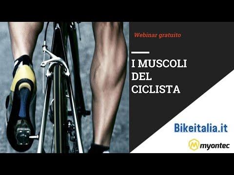 Webinar I Muscoli Del Ciclista Youtube
