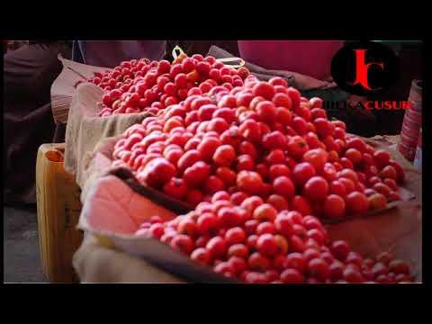 Bilicda Beeraha Somalia - Barwaaqada -Qudaarta - Runtii waxaan nahay hodon