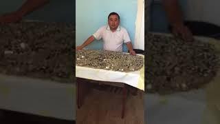 Темирлан Ормуков решил выплатить экс-президенту и депутату ЖК деньги