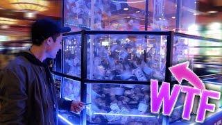 Insane $1,000,000 MONEY Machine!