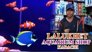 Lalukhet Fish Aquarium Shop Karachi Latest Updates (JAIC Video) in Urdu Hindi