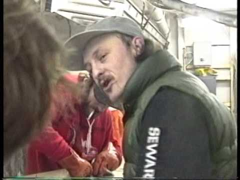 Mau Tanuz,, Fishing Company of Alaska, Alaska Pioneer 3