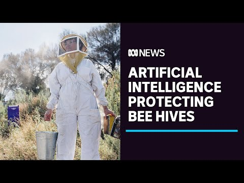 New artificial intelligence technology used to protect bees from deadly parasite | ABC News