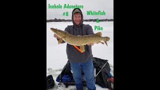 NFN Icehole Adventure 8 Ice Fishing Michigan Whitefish Thin Ice Bay Pike