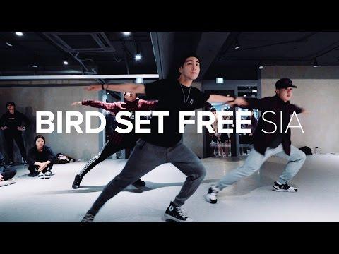 Bird Set Free - Sia / Junho Lee Choreography