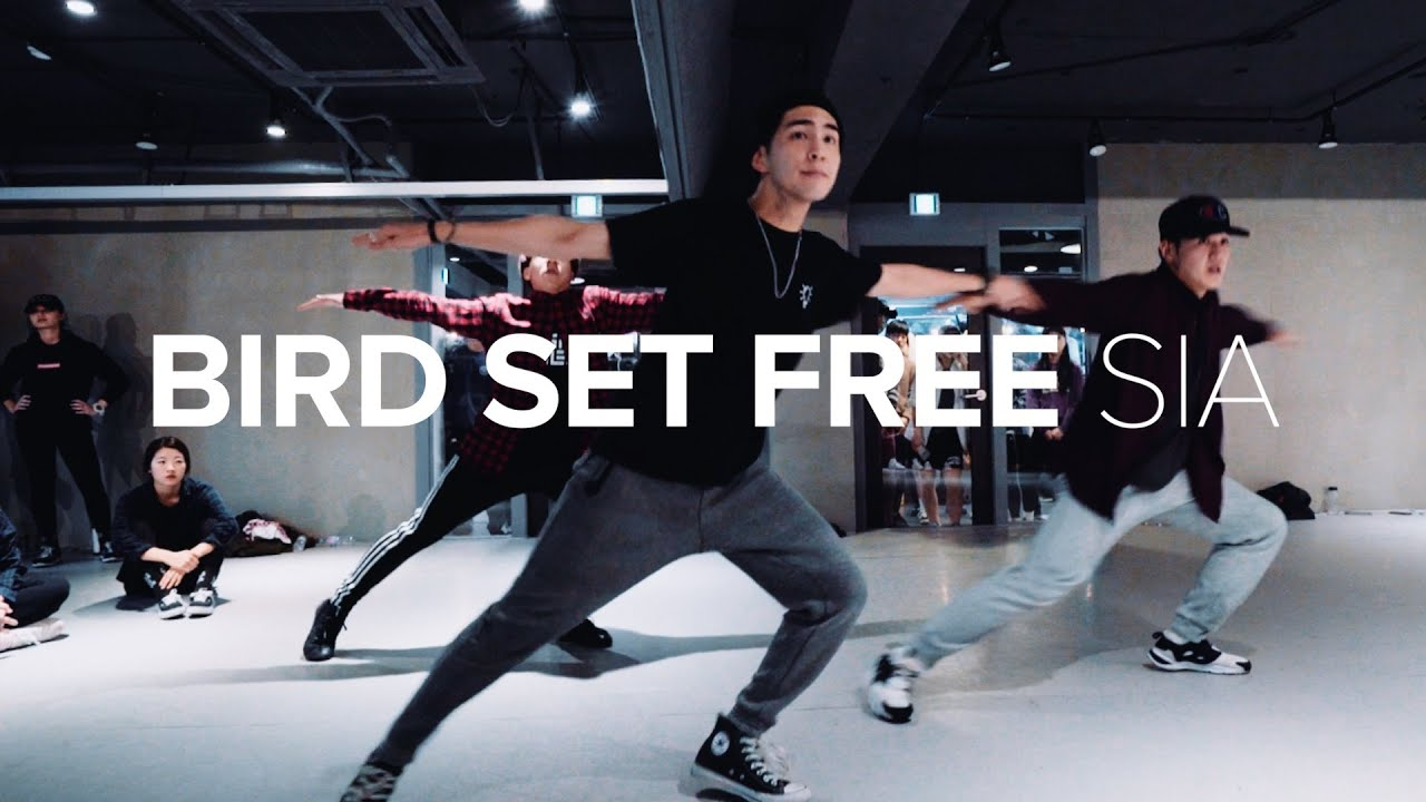 Bird Set Free - Sia / Junho Lee Choreography - YouTube
