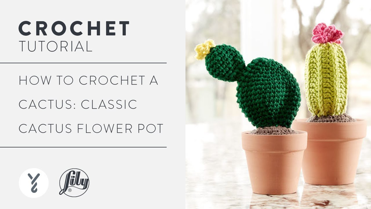 Crochet Cactus Ornament - Free Crochet Pattern (With images ...   720x1280