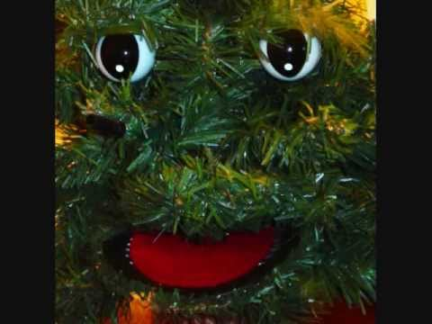 Christmas Tree Douglas Fir