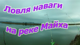Ночная рыбалка ловля наваги на реке Майха 2019 Рыбалка в Приморском крае