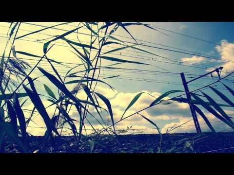 Darius Rucker - Wagon Wheel (Xristo Remix)