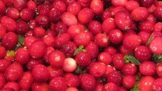 Holiday Jalapeno Cranberry Sauce