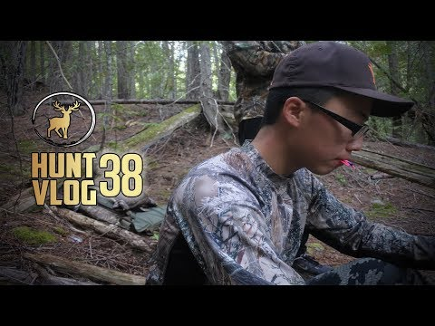 Washington State Archery Opener Elk Hunt | Hunt Vlog #38