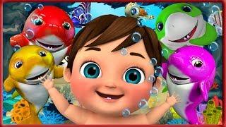 ???? Baby Shark , Five Little Monkeys | +More Nursery Rhymes & Kids Songs - Banana Cartoon [HD]