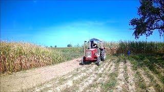 Farm Vlog #47 Das habe ich mir anders vorgestellt !
