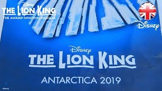 THE LION KING MUSICAL | THE LION KING: Coming to Antarctica in 2019 | Official Disney UK