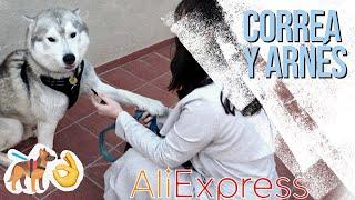 ARNESES ANTITIRONES para HUSKY  **SUPER HAUL ALIEXPRESS pt. 2**