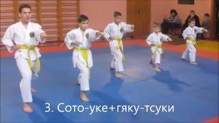 Кихон на оранжевый пояс 7 кю Экзамен Kihon 7 Kyu