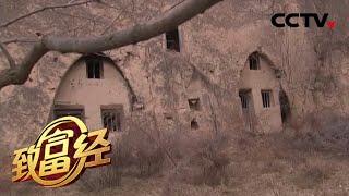 《致富经》 20200323 废弃窑洞生财 荒山变金山  CCTV农业