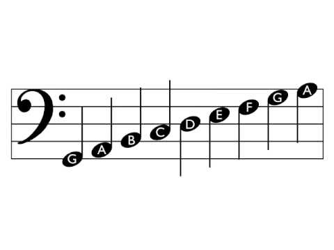 How to Read Music - Bass Clef (with free download)
