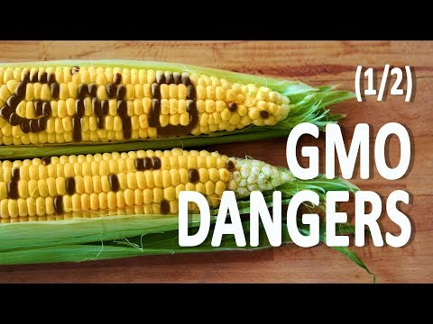 GMO Dangers: Genetic Engineering—Hidden Killer of our Health 1/2
