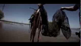 Как ловят рыбу браконьеры в Астрахани(Браконьеры, сеточники, перемётчики и прочее в Астрахани. Волга, Каспий., 2013-09-10T12:55:33.000Z)