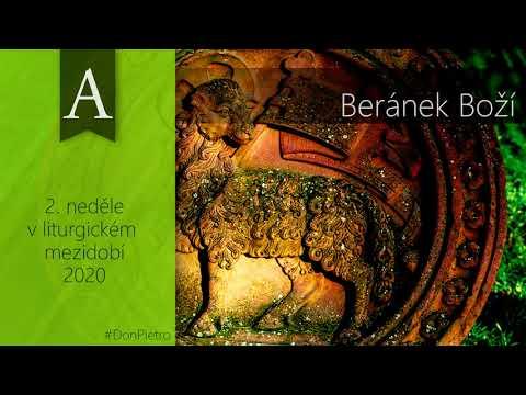 Homilie na 2. neděli v liturgickém mezidobí (A) – Beránek Boží