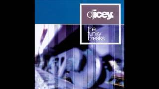 DJ Icey - The Funky Breaks