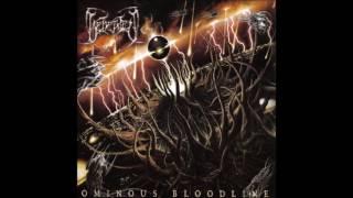 Beheaded   Ominous Bloodline   Full Album