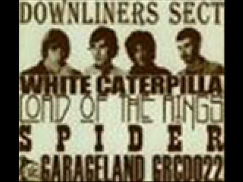 downliners sect - white caterpillar