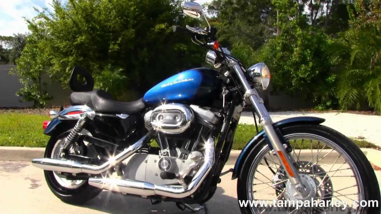 2004 HarleyDavidson 883 Sportster Custom  YouTube
