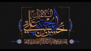 شهادة الامام الحسن المجتبى عليه السلام | السيد مجاهد الخباز