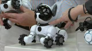 WowWee's CHiP Interactive Robotic Dog w/ Smart Ball & 2 Smartbands on QVC