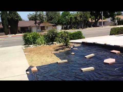 How I Kill Off Weeds & Grasses Without Spraying Chemical