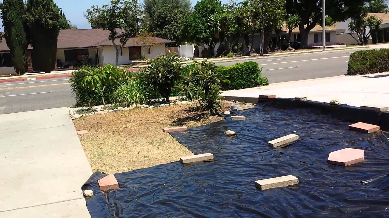 Landscaping Black Plastic Sheeting : How i off weeds grasses without spraying chemical
