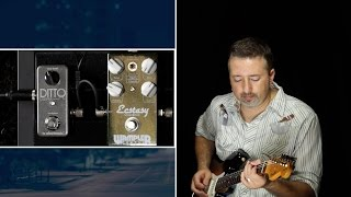 Taming The Ditto Looper For Blues