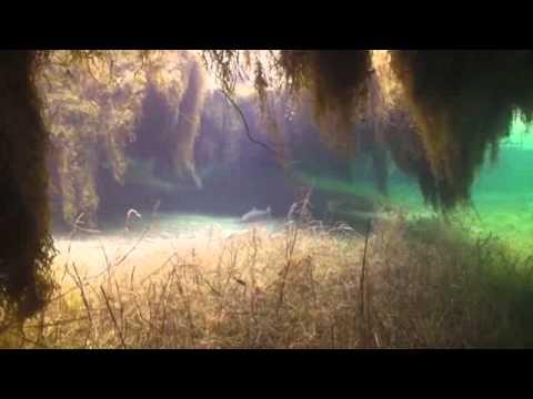 «Озеро к чему снится во сне? Если видишь во сне Озеро, что