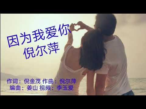 《因为我爱你》 演唱:倪尔萍