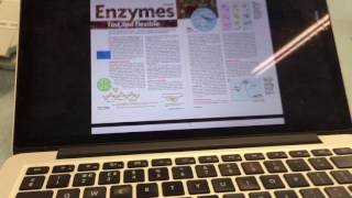 #ibbio IB DP Topic 2.5 Enzymes Lesson 2 pt1 | Will Vincent