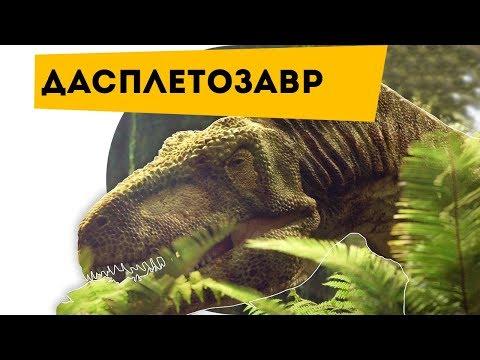 Про динозавров. ОХОТНИК на АНКИЛОЗАВРОВ Динозавр Дасплетозавр Daspletosaurus | Наука для детей