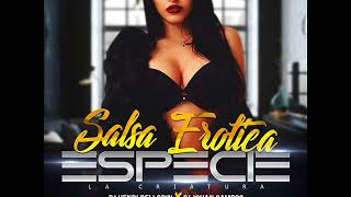 SALSA EROTICA    ESPECIE LA CRIATURA   DJ JC FT DJ HB EL ORIGINAL