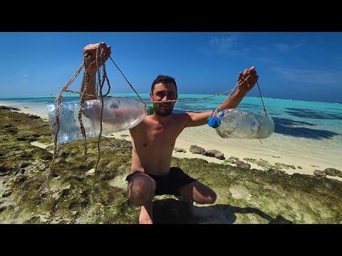 Вопрос: Как выжить на необитаемом острове без ничего?