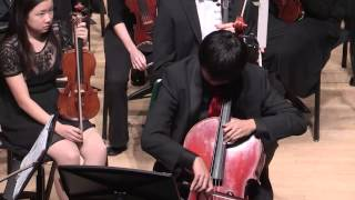 Don Quixote, Op. 35 - Midwest Young Artists Symphony Orchestra