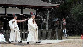 Traditional Japanese Archery: Musha Jinji in Kyoto, Kamigamo Shrine 【HD】