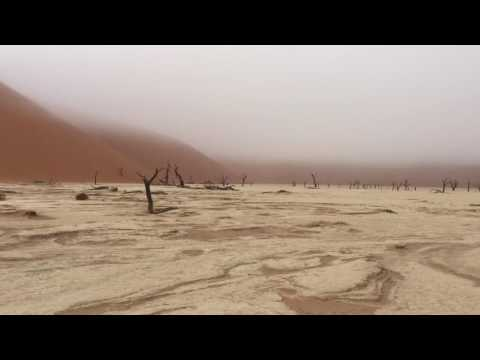 Rare misty morning in Deadvlei, Namibia