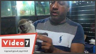 بالفيديو.. تعرف على أسباب إقبال المصريين على شراء «النسناس»