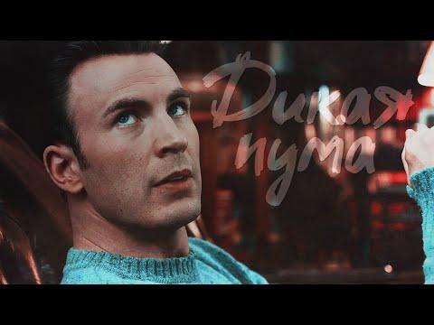 Ransom Drysdale   Рэнсом Драйсдейл - Дикая пума