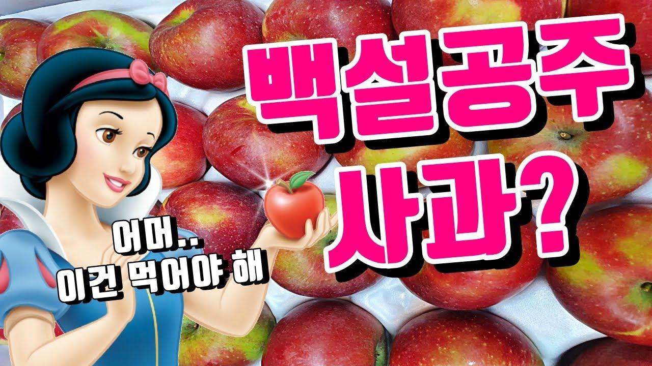고이조라 사과를 아시나요?
